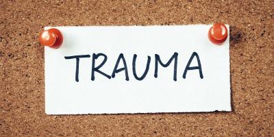 Il trauma, le conseguenze neurobiologiche. L'EMDR           Intervista alla Dottoressa Paola Cipriano